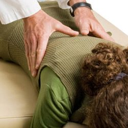 Chiropractic Richmond VA Spinal Manipulative Therapy Services